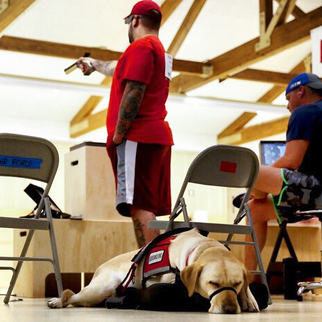 Gunny, a service dog belonging to Marine Corps athlete Andres Bergos, center, waits for the pistol competition to end at