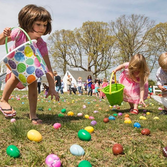 I've been slacking with posting some work photos. Here's an egg hunt at New Hope Baptist Church in Mine Run, Va. on April 15.