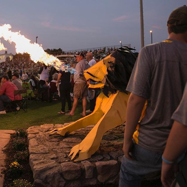 One of the things I was looking forward to most about my return to the Free Lance-Star was covering high school football again. I'm particularly glad my first game back was at Louisa which is home to a fire-breathing lion.